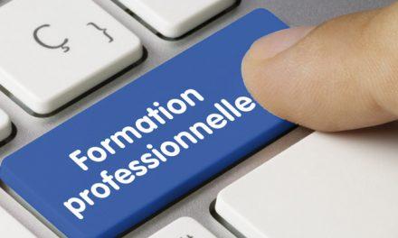La transformation numérique du système de formation professionnelle au milieu du gué