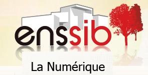 «La Numérique»: une nouvelle collection de textes numériques experts en libre accès