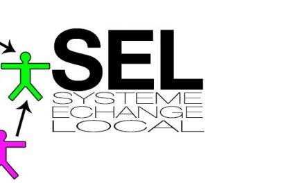 Pourquoi les systèmes d'échanges locaux (SEL) recourent-ils si peu aux outils numériques?