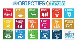 Trois indicateurs numériques parmi les 98 indicateurs nationaux des Objectifs du Développement durable (ODD)