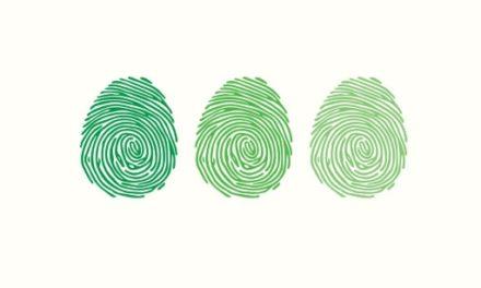 Un label «Numérique Responsable» pour les organisations publiques et privées